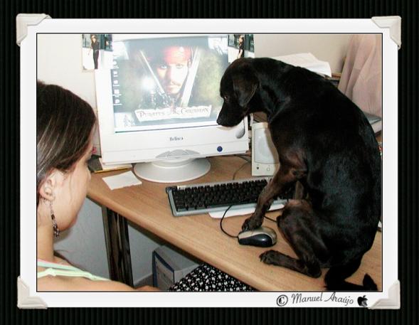 informatico_canino.jpg